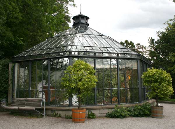altes palmenhaus im alten botanischen garten der. Black Bedroom Furniture Sets. Home Design Ideas