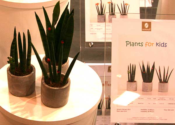 Plants for Kid's